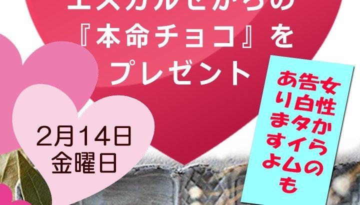 2月14日(金)男性全員にチョコをプレゼント